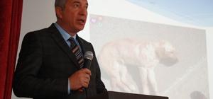 Tokat'ta hayvan kazaları için farkındalık semineri