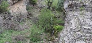 Jeotermal kaynak sahaları ihaleye çakırtılıyor