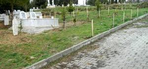 Kütahya'da 8 mezarlığa 4 bin 433 adet fidan dikildi