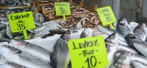 Ramazanda balık fiyatları düştü