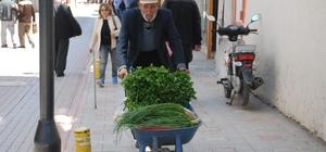 El arabasıyla 20 yıldır yeşil soğan, maydanoz satıyor