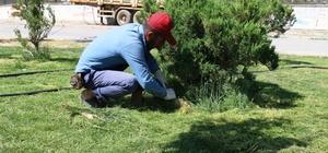 Akçakale Belediyesinde 108 kişi işbaşı yaptı