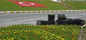 Köyceğiz'de mevsimlik çiçek dikimi