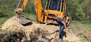Tunceli'de telef olan hayvanlar gömüldü