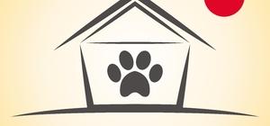 İzmirli minikler, kedi dostları için yuva yapacak