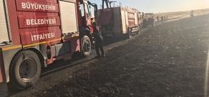 Kızıltepe de Yangın 50 dönüm buğdayı kül etti