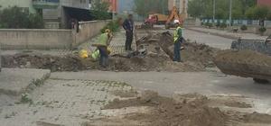 Pasinler'de doğalgaz şebekesi kazı çalışmaları başladı
