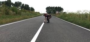Yoldaki Kaplumbağa Jandarma yardımı