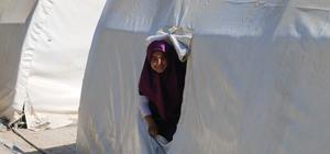 Depremzedelerin çadırda karne heyecanı