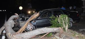 Antalya'da otomobil ağaca çarptı: 1 ölü, 2 yaralı