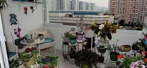 En güzel balkon ve bahçeler seçildi