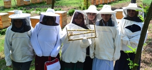 Arı sütü eğitimleri ile kadınları girişimciliğe teşvik ediyor