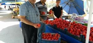 Yeni Mahalleye kapsamlı köylü pazarı