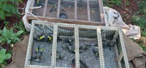 Saka kuşu avlayan 2 kişiye 40 bin lira ceza