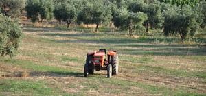 Milas'ta traktör kazası: 1 ölü