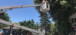 Akçakoca Belediyesi haşarat ile mücadelesini sürdürüyor