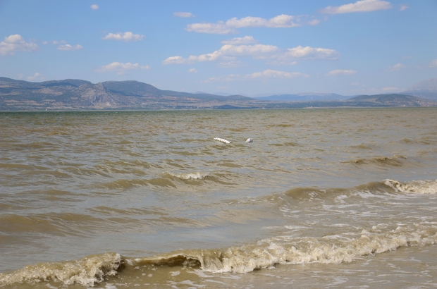 """Burdur Gölü'nde """"alg patlaması"""""""