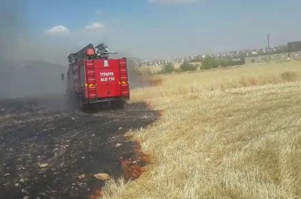 Adıyaman'da buğday yangını