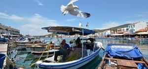 Foça Belediyesi Deniz Öyküleri Ödülü'ne başvurular uzatıldı