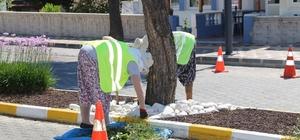 Burhaniye' de refüjlere belediye makyajı