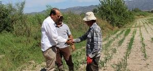 Başkan Ozan çift sürüp çiftçisinin sorunlarını dinledi