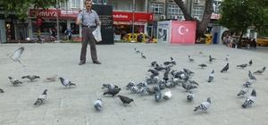 Ramazanda güvercinlere yem verenlerin sayısı arttı