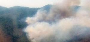 Milas'ta ziraat alanında başlayan yangın ormanı yaktı