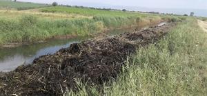 Sulama kanalında temizlik çalışma başladı