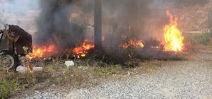 Marmaris'te ot yangını korkuttu