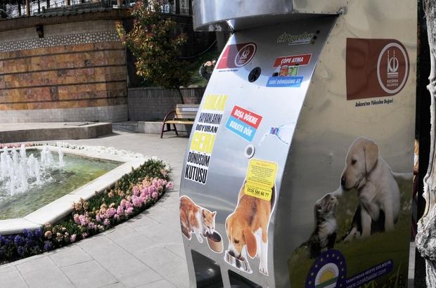 Keçiören'de pet şişeler sokak hayvanlarını doyuruyor
