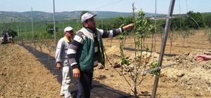 Uygulama bahçesi çiftçileri bilinçlendiriyor