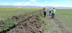Çaldıran'da susuz tarım arazileri, yeniden tarıma kazandırılıyor