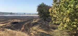 Ezine'de 20 dönümlük zirai alan yandı