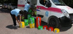 Eyüp Belediyesi sokak hayvanları için su kabı dağıttı