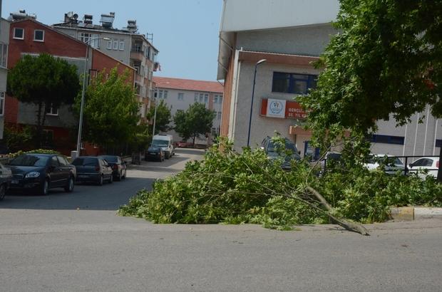 Sinop'ta şiddetli rüzgar hasara neden oldu