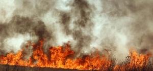 Kırklareli'nde buğday tarlası yangını