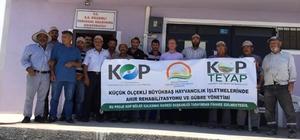 Kulu'da büyükbaş hayvan yetiştiricileri bilgilendirildi