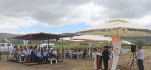 İnönü'de 4'üncü Geleneksel Tarla Günü programı