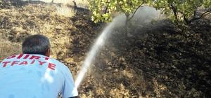 Siirt'te yangın fıstık ağaçlarına sıçramadan söndürüldü