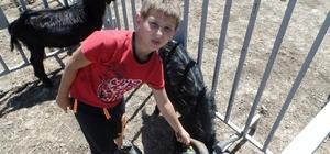 Karaburun'da Kırkım Şenliği coşkusu