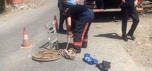 Eyüp Belediyesi Veteriner İşleri Müdürlüğü ekipleri kanala düşen yavru köpeği kurtardı