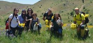 Gümüşhane ve Trabzonlu dağcılardan ortak doğa yürüyüşü