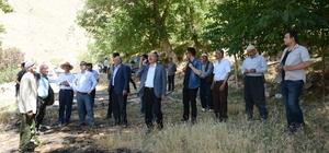 Kaymakam Akgül, yangının çıktığı bölgede incelemelerde bulundu