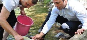 Nergele Çayı'na 7 bin kırmızı benekli alabalık yavrusu bırakıldı