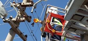 Elektrik tellerine takılan serçeyi itfaiye ekipleri kurtardı