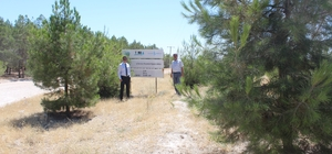 Adıyaman'da '81 İlde 81 Orman Projesi' amacına ulaştı