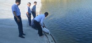 Kula'da gölete 5 bin balık bırakıldı