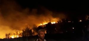 Pazarlar'da ot yangını korkuttu