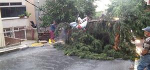 Kuvvetli yağış sonrası Eyüp'te hummalı çalışma