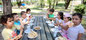 Yenimahalle'nin anaokulları piknikte